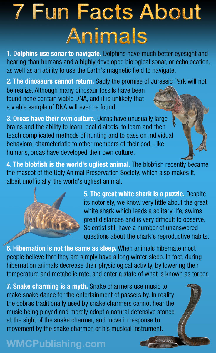 7 Fun Facts About Animals
