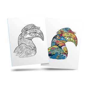 Toucan - free adult coloring page