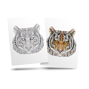Tiger - free adult coloring page