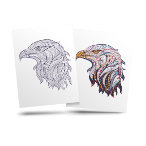 Eagle - free adult coloring page