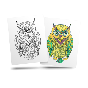 Owl - free adult coloring page